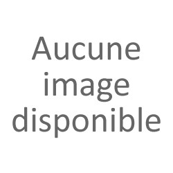 LEFOULON Pascal